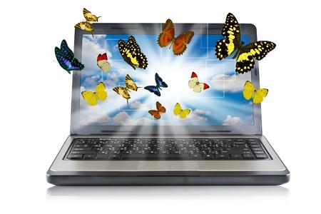 Photo pour Butterfly reaches out of Laptop - image libre de droit