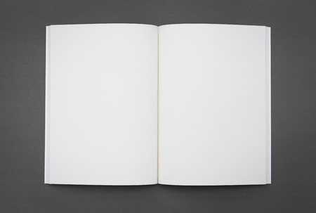 Photo pour Blank catalog,brochure, magazines,book mock up - image libre de droit