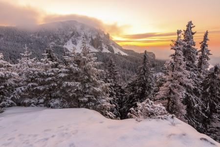 Beautiful winter sunrise in