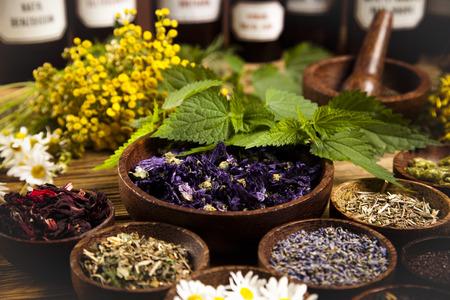 Photo pour Herbal medicine - image libre de droit