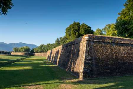 Foto de Grass in front of the fortress wall in Lucca. - Imagen libre de derechos