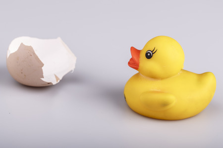 Beautiful yellow small plastic duck with egg isolated on a white background