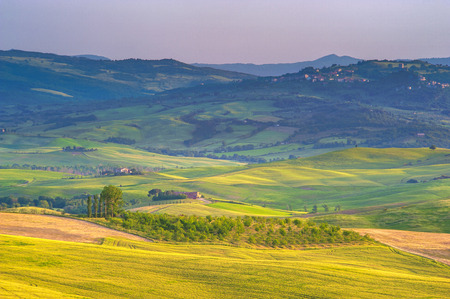 Tuscan spring in fields on the landscape