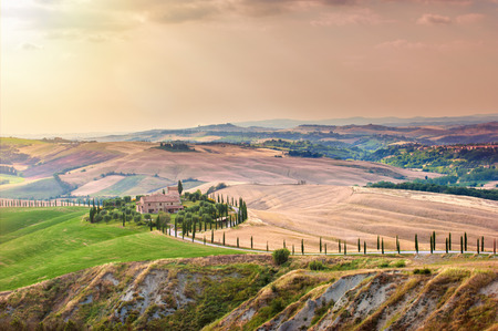 Tuscan summer on the fields in the beautiful view