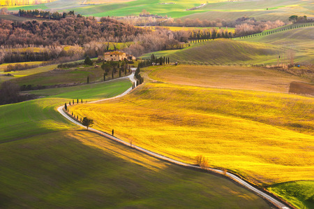 Magnificent Tuscan landscape fields and meadows warm sun