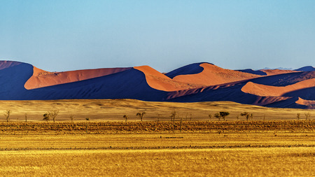 Foto de The dunes in Sossusvlei, Namibia. - Imagen libre de derechos