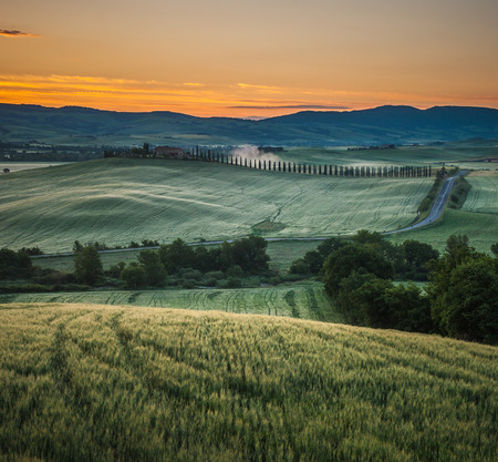 image of typical tuscan landscape