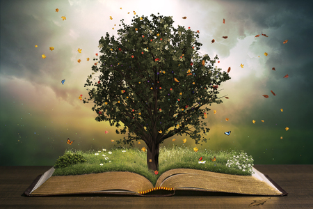 Tree with grass in a beautiful garden on an open book. Learning concept.