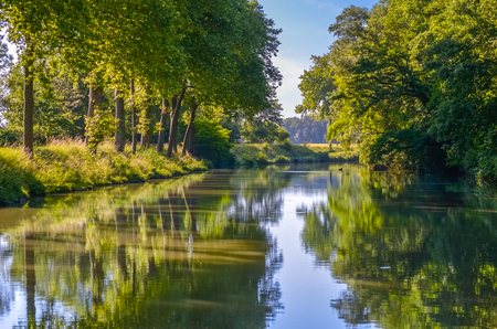 Canal du Midi, sycamore trees reflection in water, Southern France