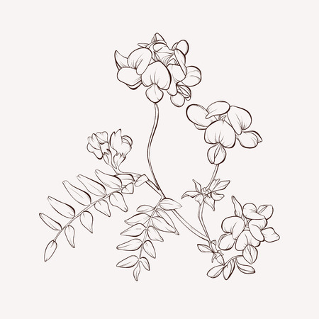 Wild vector flowers on white.Vintage card with flowers in circle. Hand-drawn contour lines and strokes. Element for design.