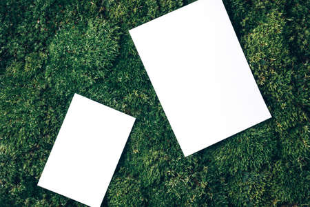 Photo for Creative layout made of square card note on green grass, moss background. Top view. Copy space. Advertising card, invitation. Wild nature, ecology concept. Sustainable, organic, zero waste lifestyle - Royalty Free Image