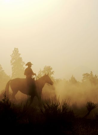 silhouette of a cowboy in the west