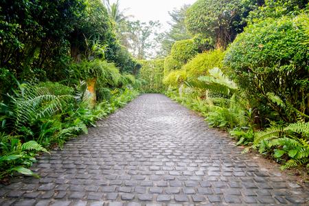 Foto de Cobble stone walkway in a beautiful tropical garden - Imagen libre de derechos