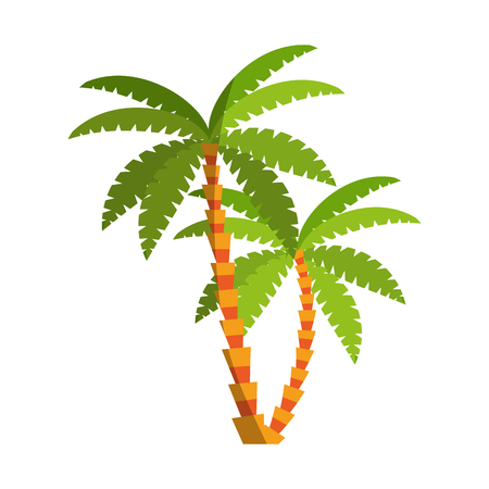 palms icon over white background. colorful design. vector illustration