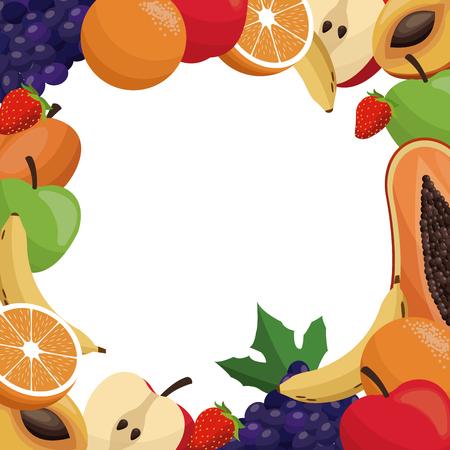 fruit delicious frame design vector illustration eps 10
