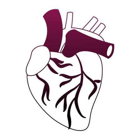 Human heart icon: Royalty-free vector graphics