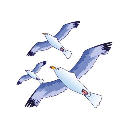 Illustration pour gulls flying icon over white background, vector illustration - image libre de droit
