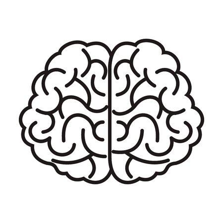 Illustration pour brain organ human isolated icon vector illustration design - image libre de droit