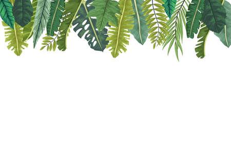 Illustration pour tropical leafs palm nature frame vector illustration design - image libre de droit