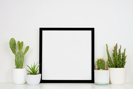 Photo pour Mock up black square frame with potted cacti and succulent plants on a shelf against a white wall - image libre de droit