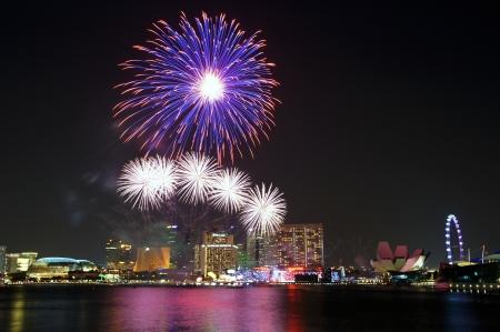 Fireworks over Marina Bayの素材 [FY31014993258]