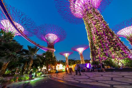 Photo pour South East Asia, Singapore Famous destinations Garden By The Bay tourism travel tourist attraction Supertree Grove during blue & golden hour human taking photos & selfie - image libre de droit