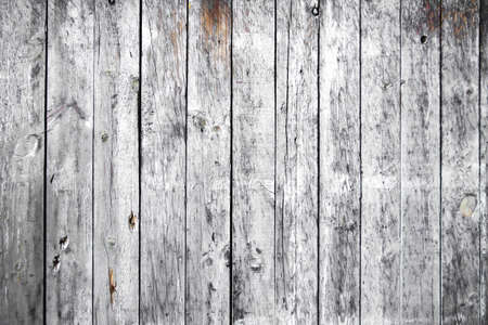 Photo for Old white painted wooden planks wall background - Royalty Free Image
