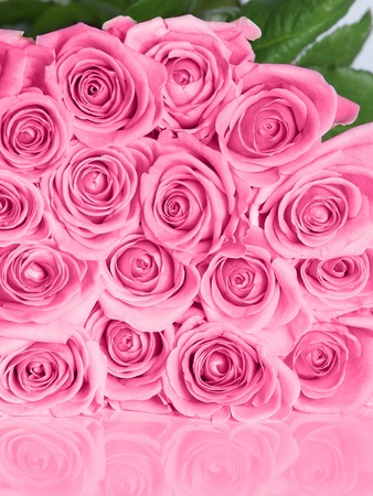 Bouquet of pink roses with reflection