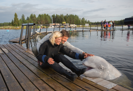 Beautiful couple is caressing of white whale