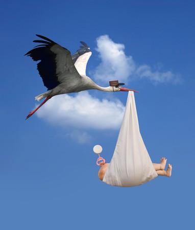 Photo pour Classic depiction of a stork in flight delivering a newborn baby - image libre de droit