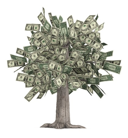 This is a high-resolution 3d render of a rooted tree with a thick stock that is growing currency for it's leaves over a white background.