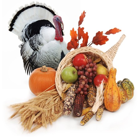Photo for horn of plenty with autumn harvest of leaves, wheat pumpkin, squash, corn, apples, pear and grapes - Royalty Free Image
