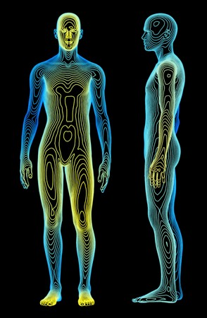 A medical concept of the human body
