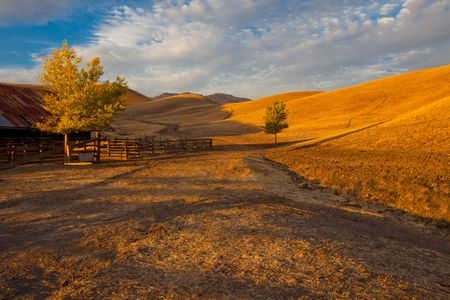 California farm land scene with rolling grassland / pasture hills and a path leading into the distance in early evening warm sunlight