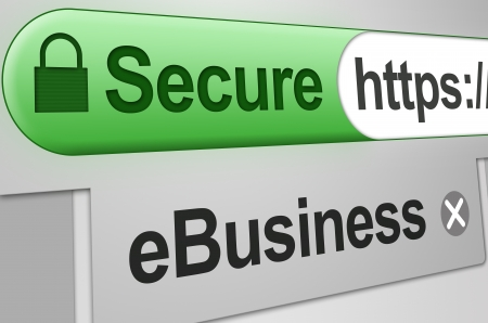 Secure web connection