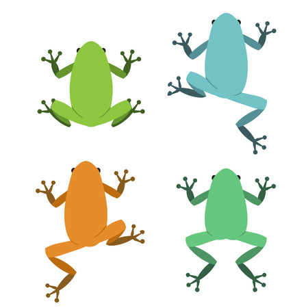 Set of frog in flat style, vector animal