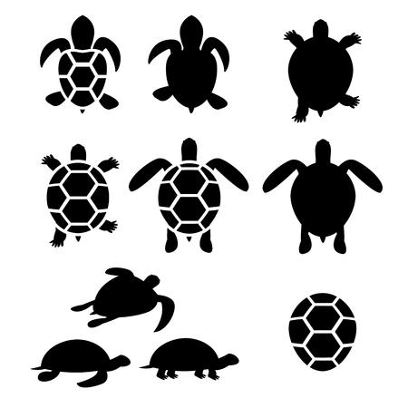 Illustration pour Set of turtle and tortoise silhouette, vector - image libre de droit
