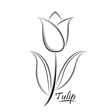 Vector black contour of a tulip flower isolated on a white background