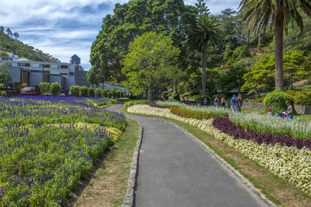 Wellington, New Zealand - March 2, 2016: Visitors resting at Wellington Botanic Garden, the largest public park in town