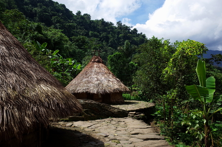 Indigenous houses at Ciudad Perdida (Lost City) in Colombia