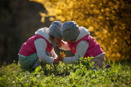 Photo for cute twin sisters, embrace on a background field with yellow flowers, happy cute and beautiful sisters having fun with yellow flowers in spring in park, cheerful holidays outdoors, healthy lifestyle - Royalty Free Image