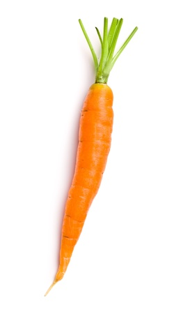 fresh carrot on white background