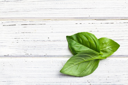 the basil leaves on kitchen table