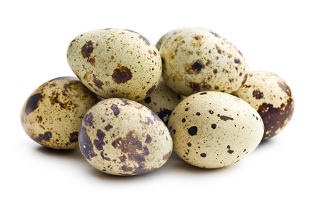 Quail eggs on white background