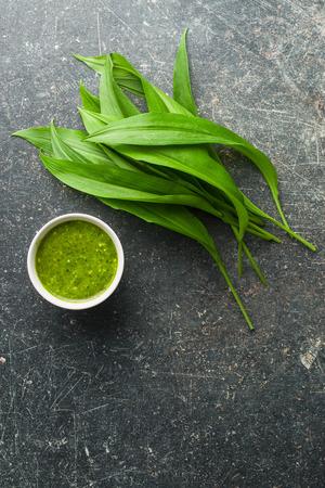 Fresh ramsons leaves. Wild garlic leaves and tasty pesto. Healthy vegetable.