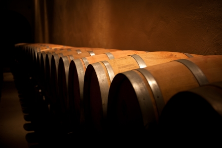 Row of wine barrels in an aging cellar