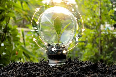 Photo pour Trees that are growing in bulbs front of global show the world's consumption with icons energy sources for renewable, sustainable development. Ecology concept. - image libre de droit