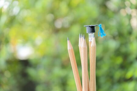 Photo for Concept of educational success. A small graduation cap is worn in a pencil, The background is natural, the bushes look bright. - Royalty Free Image