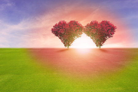 Power of couple lover, two red color tree in heart shape symbol,  representing romantic love spreading red color to grass field and blue sky, Valentine's Day holiday concept.の写真素材