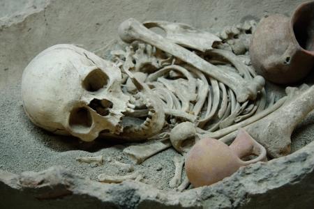 Ancient human skull and bones